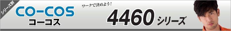 アンドレスケッティ4460