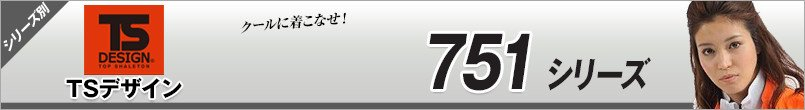 TSデザイン751